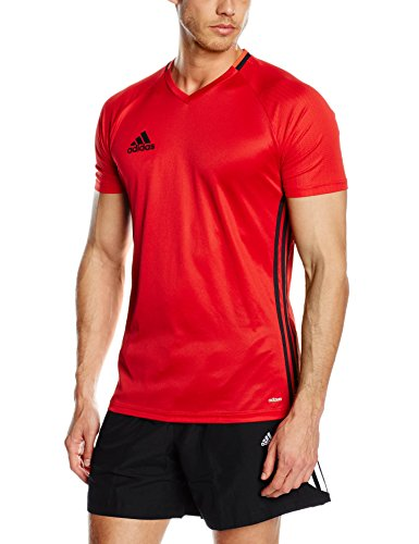 adidas Herren Trainingstrikot Condivo16, Scarlet/Black/Bright Red, M, S93530 (Mesh Adidas Shorts)