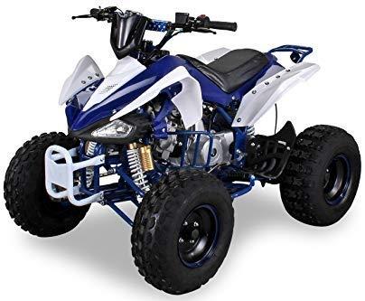 Kinder Quad S-14 125 cc Motor Miniquad 125 ccm Speedy Kinderfahrzeug Midiquad (Blau/Weiß) (Dirt Bike Rc Mini)