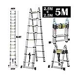 Ausziehbare Aluminium-Leiter, tragbar, multifunktional, A-förmiger Rahmen, rutschfeste Standfüße, für Außenbereich/Innenbereich/Zuhause/Dachboden/Büro, 5 m (2,5 m + 2,5 m)