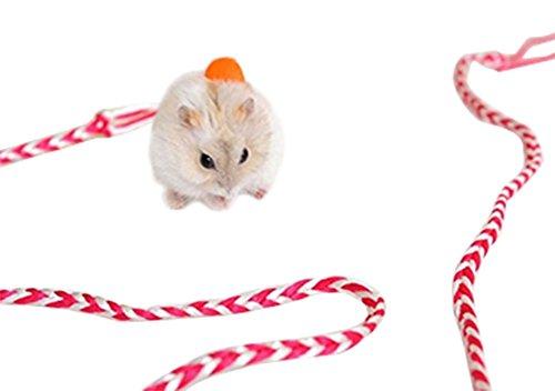 Cosanter Kleine Haustier Leinen Halsband Seil Kleintier Geschirre für Hamster Ratte Eichhörnchen 1.4m (Misc.)