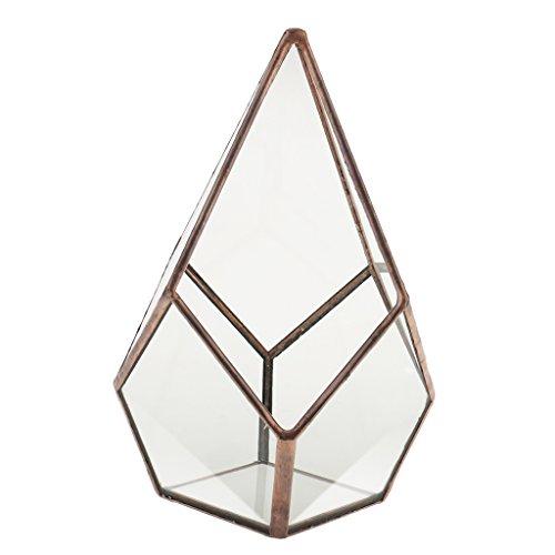 Luft Pflanzer Mini Glas Terrarium Geometrisches Glas Sukkulente Pflanzen Pflanzgefäß Deko 12x12x17cm - Kupfer -