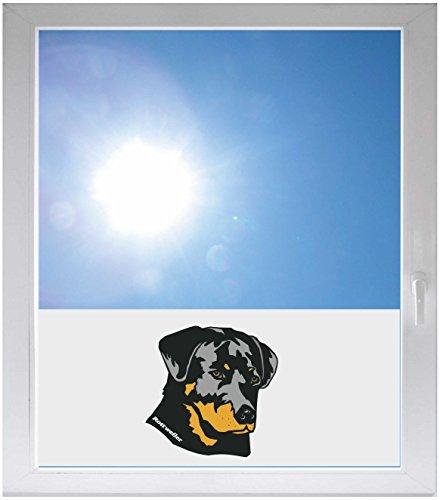 Tür Hund Dogge (INDIGOS UG Sichtschutzfolie Sonnenschutz Glasdekorfolie Fensterfolie mit Motiv satiniert blickdicht - GME074 - Rottweiler Hund Dogge Welpe Hündchen - 1000 mm Länge - 500 mm Höhe)