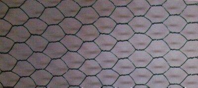 6-eck treillis de fils métalliques 13x1,0x500mm x10m PVC-couches , vert sapin