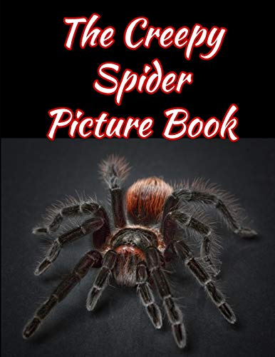 The Creepy Spider Picture Book 8.5 X 11