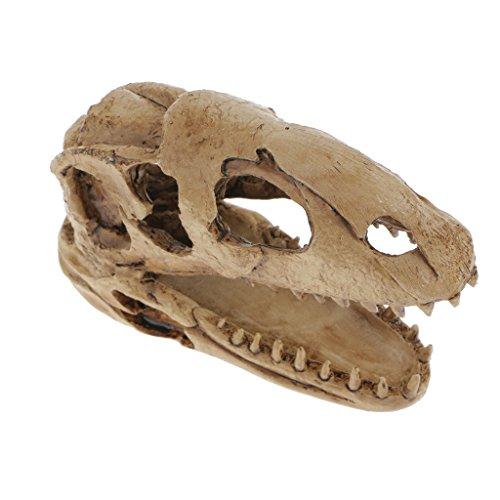 Gazechimp Aquarium Deko Felsen Häuschen Höhle Versteckten Felsenhöhle Für Fisch Tank , Dinosaurier Schädel Totenkopf Figur