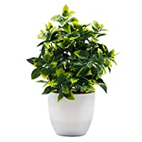 OFFIDIX نباتات صغيرة من البلاستيك الاصطناعي في وعاء أبيض، مكتب نباتات زهور صناعية مع زهرية، نباتات صغيرة من البلاستيك الصناعي للمنزل المطبخ حديقة المكتب ديكور داخلي