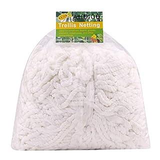 AIICIOO Rankhilfe/Ranknetz für Kletterpflanzen Trellis Netting für Bohnen, Trauben, Gurken Gewichtsunterstützung hilft Rebe und Veggie Gesund zu Wachsen