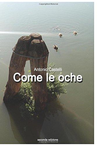 come-le-oche-seconda-edizione