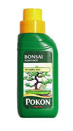 liquid-bonsai-feed-for-indoor-trees