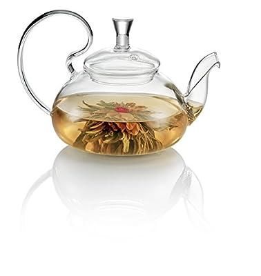 Tea Soul B6021510 Théière Verre/Bec Acier 500 ml