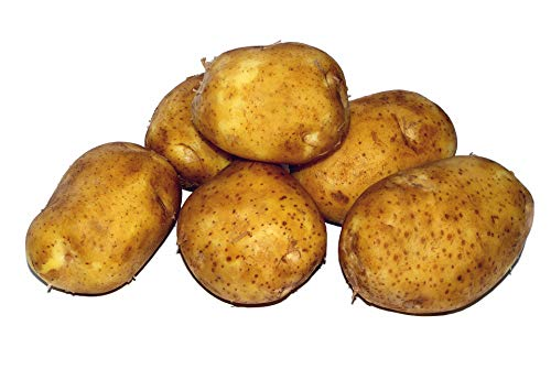 Preisvergleich Produktbild Tepenhof Kartoffeln Belana früher Linda festkochend super lecker 25kg