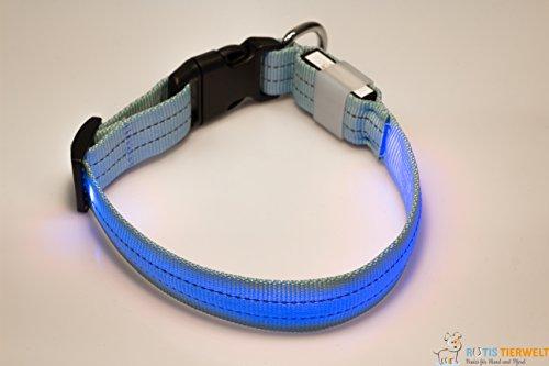 LED Leuchthalsband Basic 3 per USB aufladbar, Blau, Größe S - 2