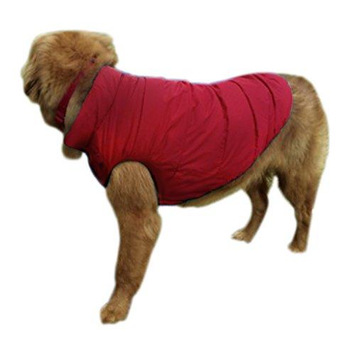 Veste Chaud pour Chien Vêtement Très Chaud Chien Manteau Chaud pour Chien Chiot pour Automne Hiver Printemps Hoodie pour Chien Multi Tailles