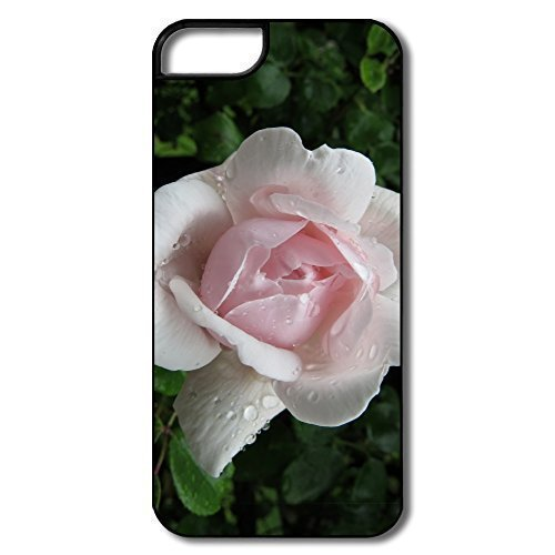 2015-tropicana-rose-phone-for-iphone-5c-case-cover-high-quality-pc-case