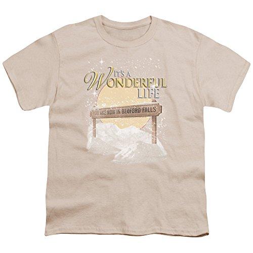 2Bhip It's A Wonderful Life 1946 Christmas Fantasy Film Bedford Falls Big Boys T-Shirt