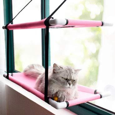 ILH Fenêtre Hamac Chat Bubble Cat Ensoleillé Lit Peut Résistent Metal Frame Stable 20 Kg Parfait Et Chaleureux Lits Superposés Recommandé par Amazon Vendeur (Bleu, Rose, Noir),Rose