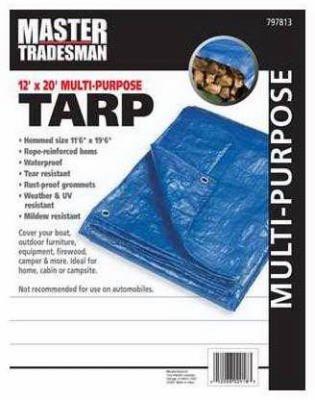 ZHEJIANG DEQING RUIDE INDUSTRIAL MT 12 X 20 BLUE TARP COVER