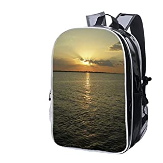 High-end Custom Laptop Backpack-Leisure Travel Backpack Amazon Sun Sky and Waters Water Resistant-Anti Theft - Durable -Ultralight- Classic-School-Black