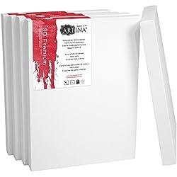 Artina Set de 5 lienzos Blancos de 100% algodón con bastidores robustos - Calidad >3D Premium< - 380 g/m² - 50x60 cm