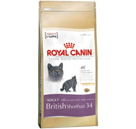 Royal Canin British Shorthair Cat Dry