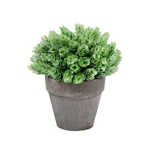 T4U Dekorative Künstliche Pflanzen Bonsai Kunstpflanze mit Topf - Hellgrün Gras