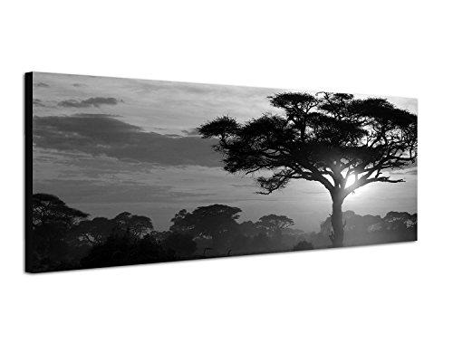 Keilrahmenbild Panoramabild SCHWARZ / WEISS 150x50cm Afrika Landschaft Bäume Sonnenuntergang