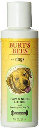 Hot-spot-lotion (Burts Bee Paw and Nose Lotion, 4-Ounce by Burts Bee)