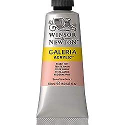 Winsor & Newton Galeria-Acrílico, color carne, 60ml - Acrylfarbe