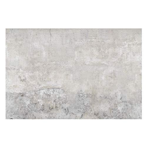 Carta da parati in tessuto non tessuto, immagine da parete, artistica, molto grande, in 3D, per camera da letto e soggiorno, dimensioni (altezza x larghezza): 290cm x 432cm; motivo: effetto parete di cemento, stile Shabby