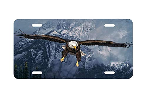 """Preisvergleich Produktbild YgDcar American Icon-Eagle Front Metal Aluminum License Plate Vanity car Tag Home Door Sign 6"""" x 12"""" with 4"""