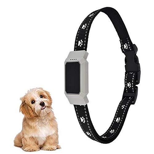 Fxqin localizzatori gps per localizzatori gps, mini localizzatore gps intelligente per animali domestici, monitoraggio vocale e ricaricabile, collare anti perso (bianco)