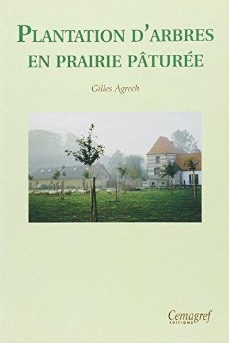 Plantation d'arbres en prairie pâturée