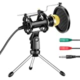Best Microphone For Podcastings - Neewer Professional Home Studio Condenser Microphone Plug Review