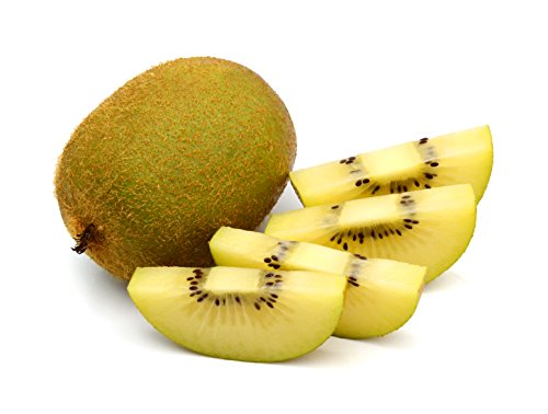 Actinidia deliciosa Goldy - Gelbe Goldene Kiwi - verschiedene Größen (60-80cm Topf 2 Ltr.)