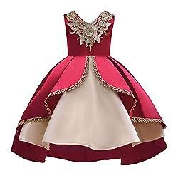 Yanhoo Kinder Baby Mädchen Unregelmäßiger Rand Prinzessin Brautjungfer Festzug Geburtstag ärmellos Gestickt V-Ausschnitt Party Hochzeit Tutu Kleid