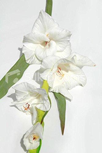 Gladiole Kunstblume, realistische Optik und Haptik, Elfenbeinfarben