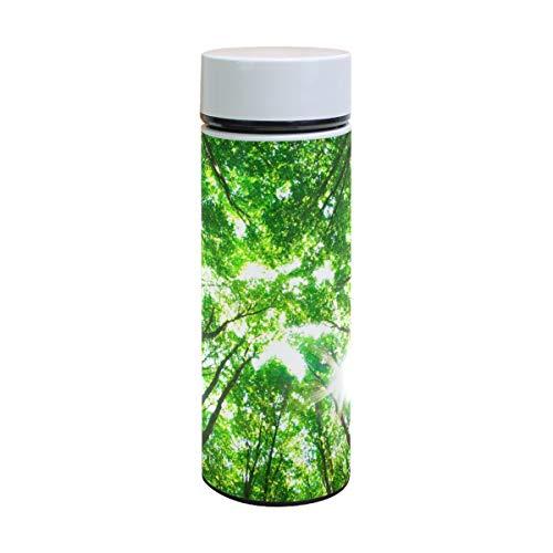 EZIOLY Early Morning Sun The Green Forest Vakuumisolierte Edelstahl-Tasse Wasserflasche Reise-Kaffee-Thermos 350 ml -