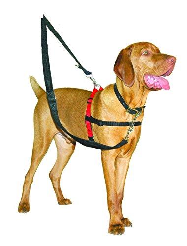 Halti Hundegeschirr, Größe M - 4