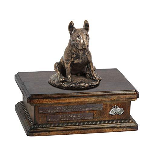 Toro Terrier Sentado