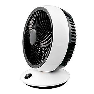 AirArtDeco 6 Inch USB Portable Desk Fan, 2-Speed Control USB Powered Fan (Black/White)