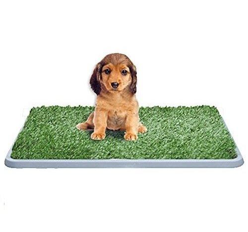 takestopr-potty-lettiera-in-erba-sintetica-per-cani-tappetino-toilette-wc-ideale-per-cuccioli-sostit
