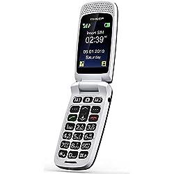 ISHEEP GSM Téléphone Portable Débloqué avec Grandes Touches (SF213)