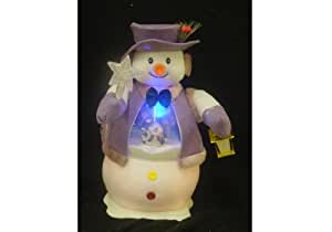 home accessories seasonal dcor christmas novelty decorations - Fiber Optic Snowman Christmas Decorations