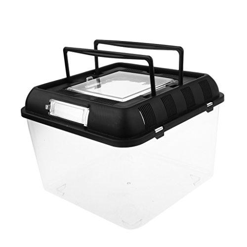 Homyl Reptilien Transportbox in 2 Größen - 25x25x20cm