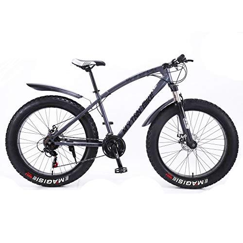 Fatbike 26 Zoll 21 Gang Shimano Fat Tyre Mountainbike 47 cm RH Snow Bike Fat Bike (Grau Matt)