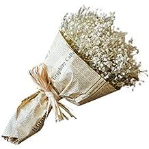 Natural Seco completo de estrellas realmente flores ramo de decoración para el hogar 30cm*16cm A