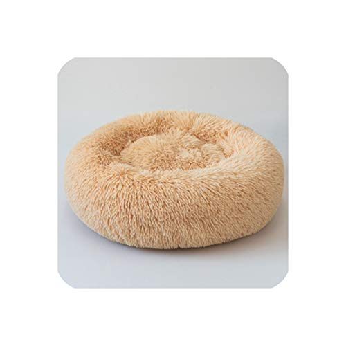 Eternity Bliss Donut Cat Bed Dog Beds for Medium Small Dogs Self Warming Indoor Round,Light Yellow,Od 70 X20Cm