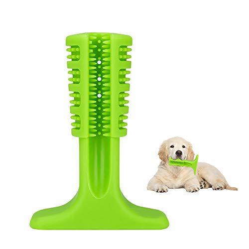Hunde Zahnbürste Zahnpflege, Coquimbo Zahnbürste Hund für Klein Hunde, Katzen, die Meisten Haustiere, Geschenk für Haustiere Liebhaber, Grün