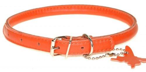 Orange-nappa Leder (Die sehr Weichsten Hundehalsband aus gerolltem Leder. Leichte & Slimline. Hals Größen: 20-25cm:)