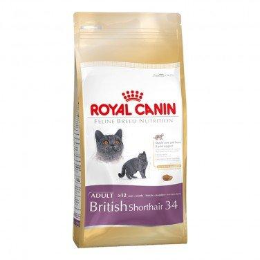 Royal Canin, Futter für Britisch-Kurzhaar-Katzen, - Kurzhaar Katzenfutter British
